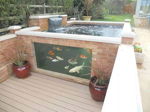 These above ground koi pond with window ideas will totally inspire