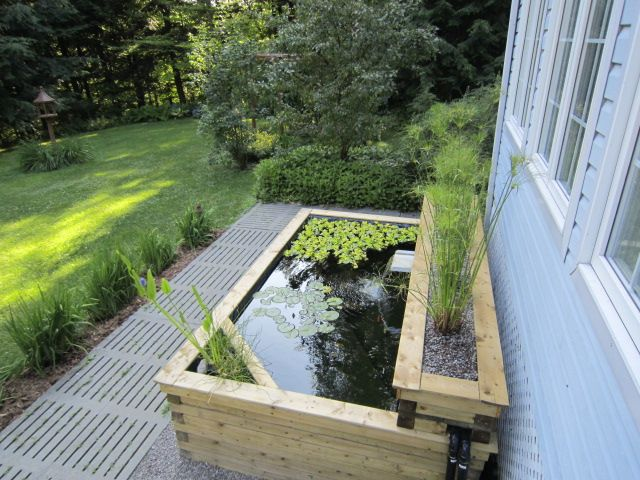 Our above ground koi pond built in 2011 | Ponds/waterfalls | Patio