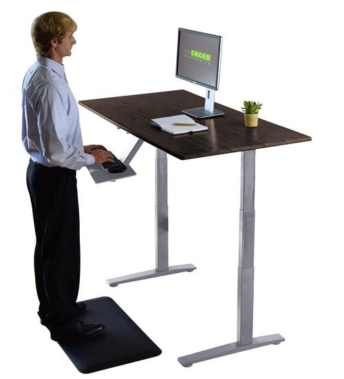 Ergonomic Electric Bamboo Standing Office Desk. Dual Motor + Memory