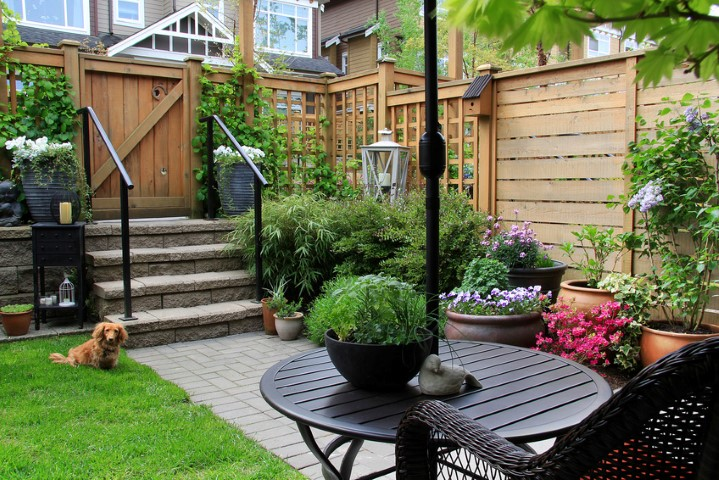 12 Simple Landscaping Ideas for Privacy in Your Yard - Zacs Garden