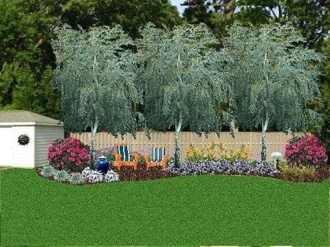 Popular Of Backyard Privacy Landscaping Ideas Landscape For How To