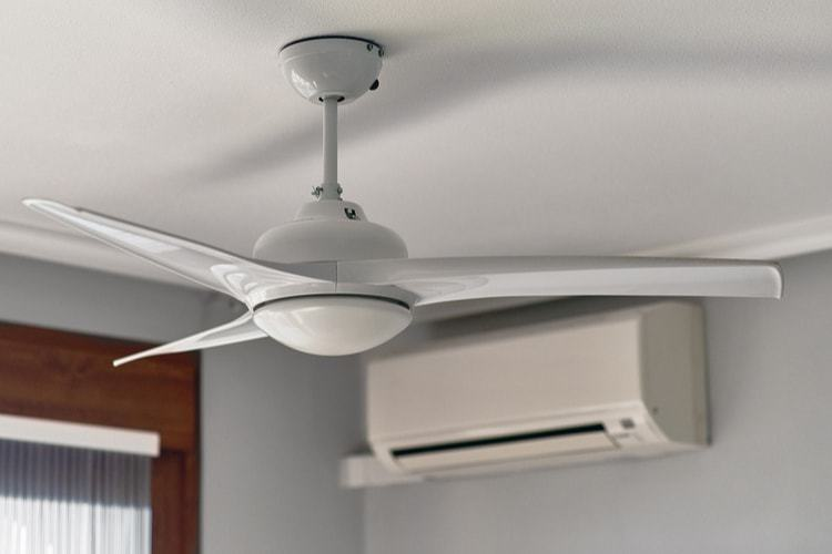 The 25 Best Ceiling Fans of 2019: Hunter, Westinghouse & More