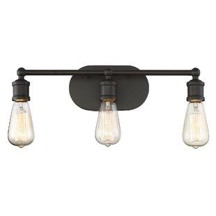 Mason Jar Vanity Light Fixture | Wayfair