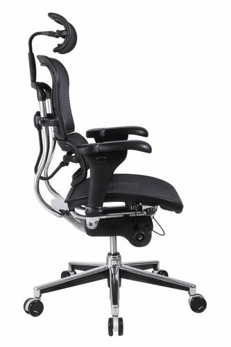 Ergonomic Office Chair with Lumbar Support | Best Ergonomic Office