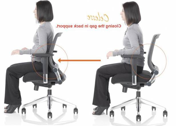 Ergonomic Chair Back Support Ergonomic Chair Lumbar Support