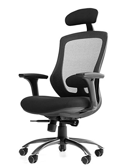 Amazon.com: OFFICE FACTOR Executive Office Chair with Mesh Back