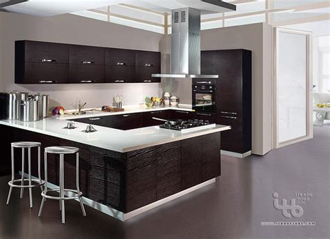kitchen cabinet,custom kitchens,kitchen furniture