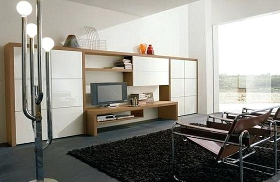 Store in the modern living room storage cabinets with doors