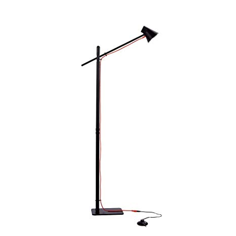 Amazon.com: Ominilight LED Floor Lamps with Reading Light - Modern